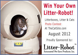 litter robot black friday picture of the month litter box photos sponsored by litter