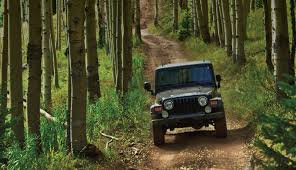 best jeep for road best road trails in the southeast for your 4x4 wheels and
