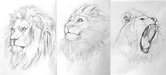lion process limetown studios