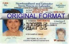 newfoundland id and drivers license and novelty id cards