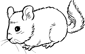 baby mouse coloring page kids coloring