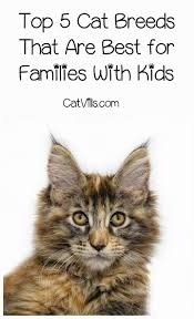 392 best family pets images on pinterest dog owners pet
