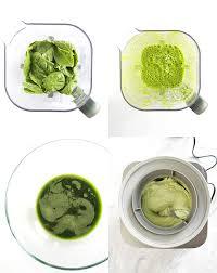 vegan mint chip ice cream diy natural food coloring robust