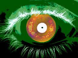 Iris by Iris Recognition Report Evaluates U0027needle In Haystack U0027 Search