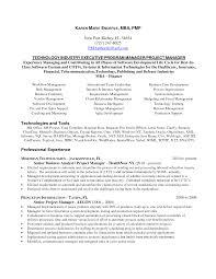 senior program manager sample resume elegant crazy project manager