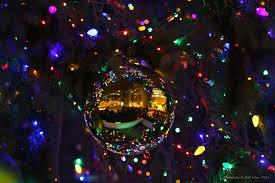 christmas tree lighting ceremony at daley plaza