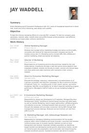 Resume Examples Online by Online Marketing Manager Resume Samples Visualcv Resume Samples