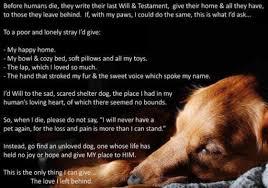 when a pet dies pet loss index