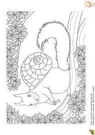 coloriage escargot coloriages escargot et ver children art