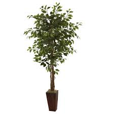6 u0027 ficus tree w bamboo planter check this awesome product by