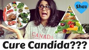 how to cure candida confused candida diet vs 80 10 10 diet
