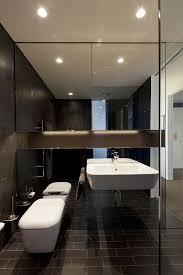 Mirrored Bathrooms Decorative Mirrored Walls Home Design