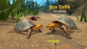 box turtle simulator android apps on google play