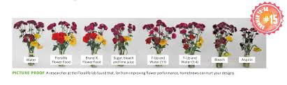 flower food packets ask the expert do plant food packets really work fiori ltd