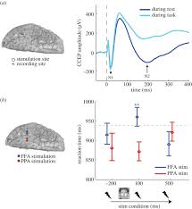 Human Brain Mapping Mapping Complex Networks With Cceps Philosophical Transactions