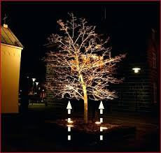 solar powered tree lights outdoor cozy solar powered