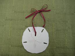 20 best sand dollar crafts images on sand dollar