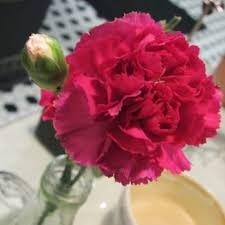 Flowers Irvine California - crêpes de paris closed 65 photos u0026 96 reviews creperies