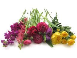 Wholesale Floral Centerpieces by Diy Wedding Flowers Colorful Bud Vase Centerpieces Budget