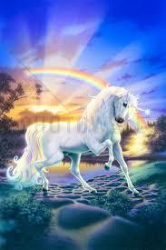 rainbow unicorn wall mural photo wallpaper photowall rainbow unicorn wall mural photo wallpaper photowall