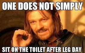 Exercise Memes - one does not simply sit on the toilet after leg day memes workout