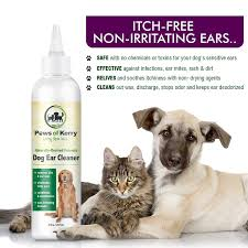 amazon com dog u0026 cat ear infection treatment for itch discharge