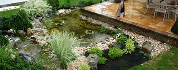 creating more amazing backyard by the existence of koi pond