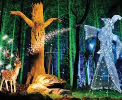 illuminated enchanted forest christmas stockeld park yorkshire