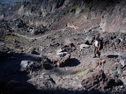 black lava rock landscaping cool lava rock landscaping ideas