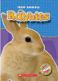 thanksgiving is by gail gibbons rabbits rabbits and more rabbits by gail gibbons scholastic