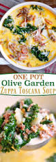 family garden chinese restaurant best 25 olive garden salad ideas on pinterest olive garden