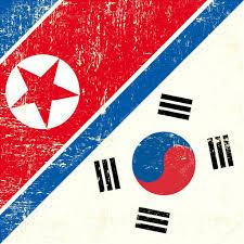Flag Of South Korea North Korean And South Korean Flag U2014 Stock Vector Tintin75 29983445