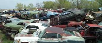 mustang salvage yard mustang project s slice of heaven average s car