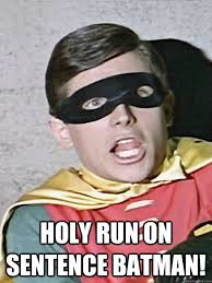 Meme Sentences - holy run on sentence batman memes