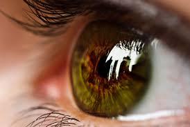 Preventing Blindness How Can You Prevent Blindness Enlighten Me