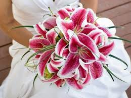 bouquet for wedding top 10 flowers for wedding bouquets celebration advisor