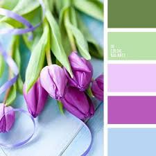 35 best color inspiration images on pinterest colors color