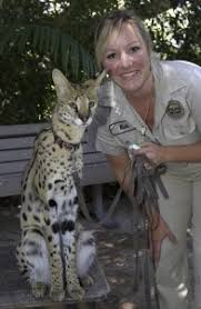 best cv exles australia zoo ryan cartlidge author at animal training academy page