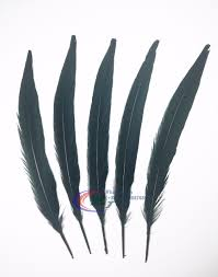 compare prices on pheasant feather crafts online shopping buy low