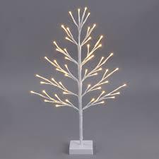 bonsai light tree indoor bonsai tree growing and care indoor