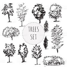set of different types hand drawn trees stock vector art 540490256