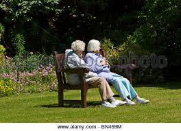 Bench Ladies Old Ladies On A Bench Stock Photo Royalty Free Image 17544944