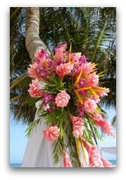 tropical plants and flowers guide rare flowers tropical landscaping
