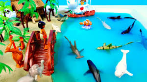 books about the color blue learn sea animal names ocean water colors shark slime jungle book