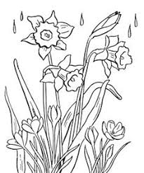 beautiful spring flowers u2013 coloring pages creativity window