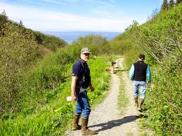 homer parks u0026 trails great scenic hikes with sea views