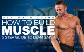 how to build muscle workouts diet plans u0026 supplements