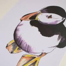 cute puffin illustrated art print by north u0026 fauna