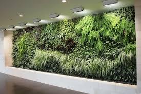 indoor garden wall gardening ideas