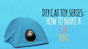 diy cat toys how to make a cat tent youtube